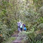 Educação ambiental na Reserva Volta Velha