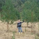 42 Plantio em junho de 2010 (3)