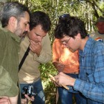 6 - Fazendo cáculos de carbôno - Abril de 2007 (3)