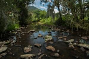 Nascente do Rio Canoas